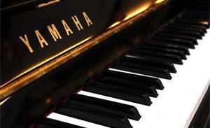 键盘乐器资讯